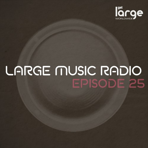 Large Music Podcast 25 mixed by The Checkup