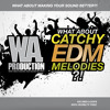 WA Production - What About Chatchy EDM Melodies Preview