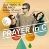 prayer in c lilly wood&the prick and robin schulz