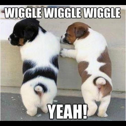 Wiggle Generation (DaNo Club Edit)
