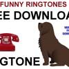 Dogs Howling Ringtone