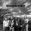 Country - Sylvie (featuring Lowell George & Mark & Matt Andes)
