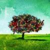 Ah'lar Ağacı- Didem Madak mp3