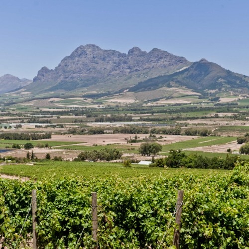 Discovering The South African Wines of Fairview and Spice Route