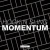 Hook N Sling - Momentum (Original Mix)