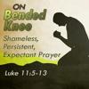 On Bended Knee: Shameless, Persistent, Expectant Prayer