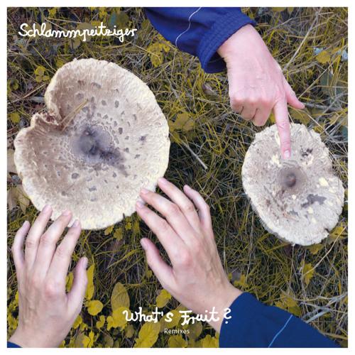 Schlammpeitziger - What's Fruit? (Remixes)