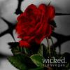 Wicked | www.TidoVegas.com