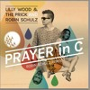 Lilly Wood & The Prick And Robin Schulz Prayer In C-(Alex Carroll Remix) - FREE DOWNLOAD!!