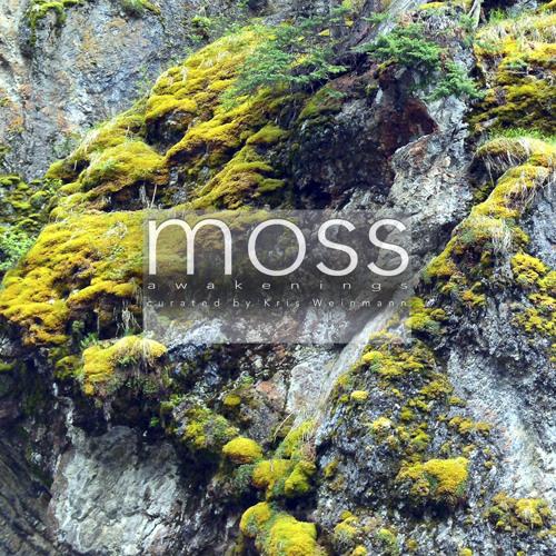moss: awakenings