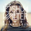 Birdy - Skinny Love (Joshua Walter Remix) (free download)