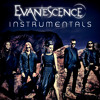 Evanescence - What You Want (Official Instrumental)