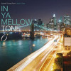 In Ya Mellow Tone Vol.6  you are beautiful