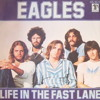 The Eagles - Life In The Fast Lane (Sam~pled Re-edit)