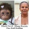Black Devil - Blang Raciste - JoOcka StudiiO