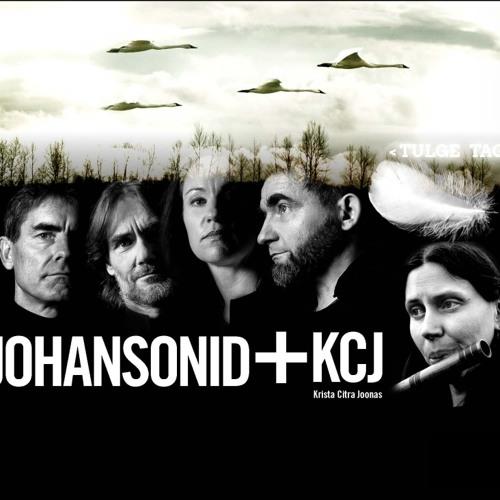 Jaak Johanson - Sisemeri (2014)