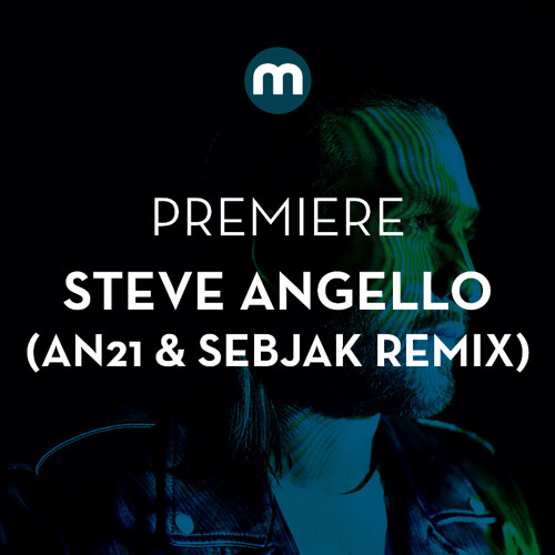 Premiere: Steve Angello 'Wasted Love' (AN21 & Sebjak remix)