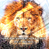 100 Million (DU3 Remix) - Birdman Ft. Young Jeezy, Rick Ross, Lil Wayne