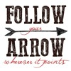 Follow Your Arrow Kacey Musgraves cover