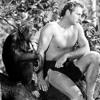 Tarzan (Original Mix)**FREE DOWNLOAD**