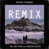 Peter Thomas - All Of You [Ft. Devin Ciuci] (Shaun Connelly Remix)