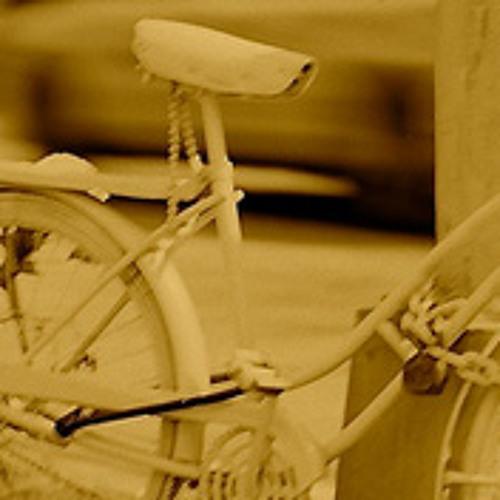 Fahrradwege In Suelz