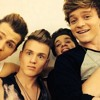 Wildheart - The Vamps ( Cover )
