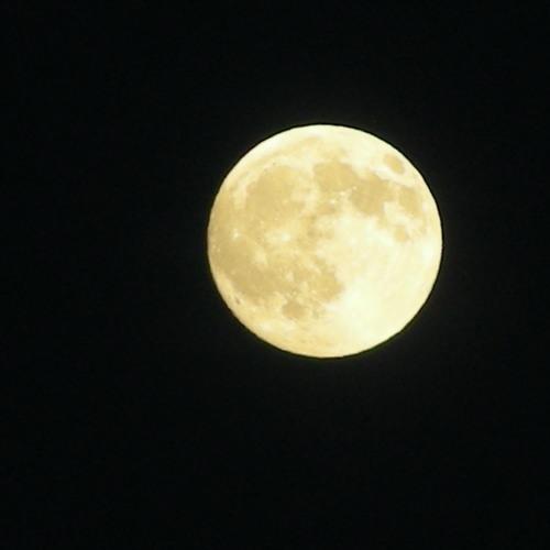 Jag Väntar Månen