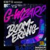 G-Wizard, EBTG - Missing Boomerang (SABIO Mashup)