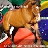 CTG Gildo de Freitas - Sonho De Bento (Letra e Musica: Leandro Berlesi)