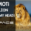 MOTi - Lion (In My Head) [Original Mix]