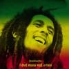 I Dont Wanna Wait In Vain-Bob Marley RKmix