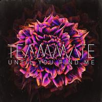 Teammate - Until You Find Me