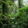 ¿Cuáles son las principales dificultades para predecir el clima en Colombia? - Janneth Escobar