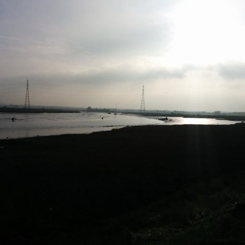 Soundscape - The Oare Marshes