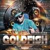 [DJ - NEXUS] Goldfish Mix