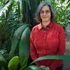 Rebuilding Rainforests - Robin Chazdon, Ecology and Evolutionary Biology