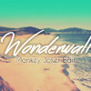 Oasis - Wonderwall ft. Katy McAllister (Monkey Joker Edit) mp3