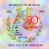SPOT SINDICATO DE MÚSICOS SECCIÓN 131 STA CECILIA 2014