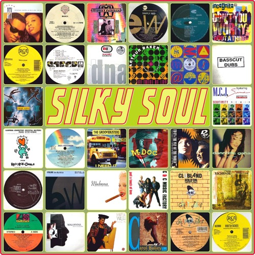 S.W. presents Silky Soul - A vocal ride into early 90s Garage House