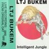 LTJ Bukem - Love Of Life 'Intelligent Jungle' - Late 1995 mp3