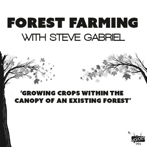 Forest Farming with Steve Gabriel (PVP094)