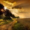Nemesvári Norbert - Seasons In The Sun /Terry Jacks cover/