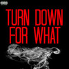 Dj Snake X Lil Jon - Turn Down For What (IlluminateBoy Remix)