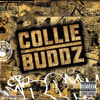 Collie Buddz - Mamacita (World Wide Riddim) DJ Nathan