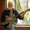 Dr. Kucho - King Of Deep House Ronald Jenkees Guitar sound