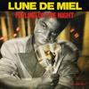 Lune De Miel - Feeling Of The Night (ItaloPassion) mp3