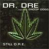 100 - 128 Intro - Burn It Up - Snoop Dog Ft Dr Dree - Still Dree ((DJ STORY))