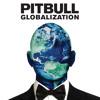 Pitbull-Time Of Our Lives feat. Ne - Yo)