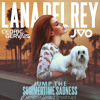 Jump the Summertimes Sadness - Lana Del Rey vs Cedric Gervais vs JVO(Dimifovr Beatz Mashup)
